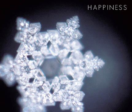 Water Crystal ~ Happiness